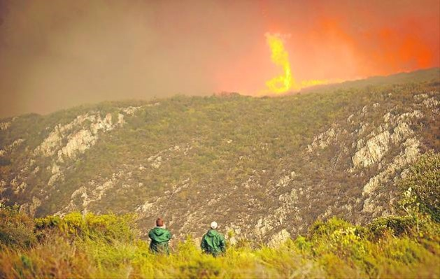 Firefighters battling a blaze in Knysna Image by Ewald Stander